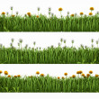 Grass with dandelions — Stockfoto