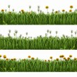 Grass with dandelions — Stock Photo