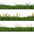 Green grass with flowers — Stock Photo #21781665