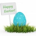 Easter Egg on Fresh Green Grass — Stock Photo