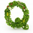 Green Grass Letter Q — Stockfoto