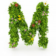 Green Grass Letter M — Foto Stock
