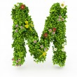 Green Grass Letter M — Stock Photo