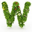 Green Grass Letter W — Stock Photo