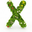 Green Grass Letter X — Stock Photo