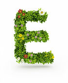 Green Grass Letter E — Stock Photo