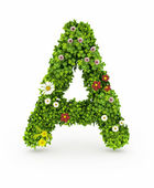 Green Grass Letter A — Stock Photo