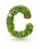 Green Grass Letter C — Stock Photo