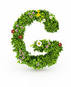 Green Grass Letter G — Stock Photo
