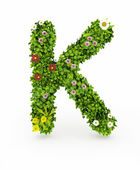 Green Grass Letter K — Stock Photo