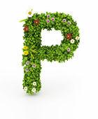 Green Grass Letter P — Stock Photo
