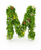 Green Grass Letter M — Stock fotografie