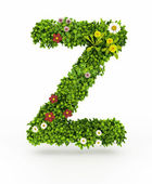 Green Grass Z Letter — Stock Photo