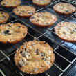 Homemade Cookies — Stock fotografie #30045701