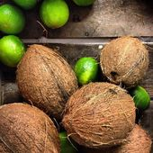 Fresh coconuts and limes — Stock Photo