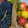 Stock Photo: Apples, grapes, pumpkins in wicker basket