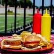 Tailgate Party — Stock Photo #31633545
