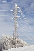 Frost crystals on Power Lines — Stock Photo