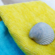 Stock Photo: Seashell on towel