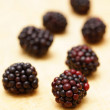 Fresh brambles — Stock Photo
