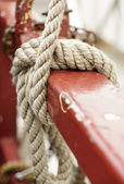 Rope knot — Foto Stock