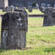 Graveyard — Stock Photo #6825396