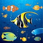 Underwater Life Vector — Stock Vector