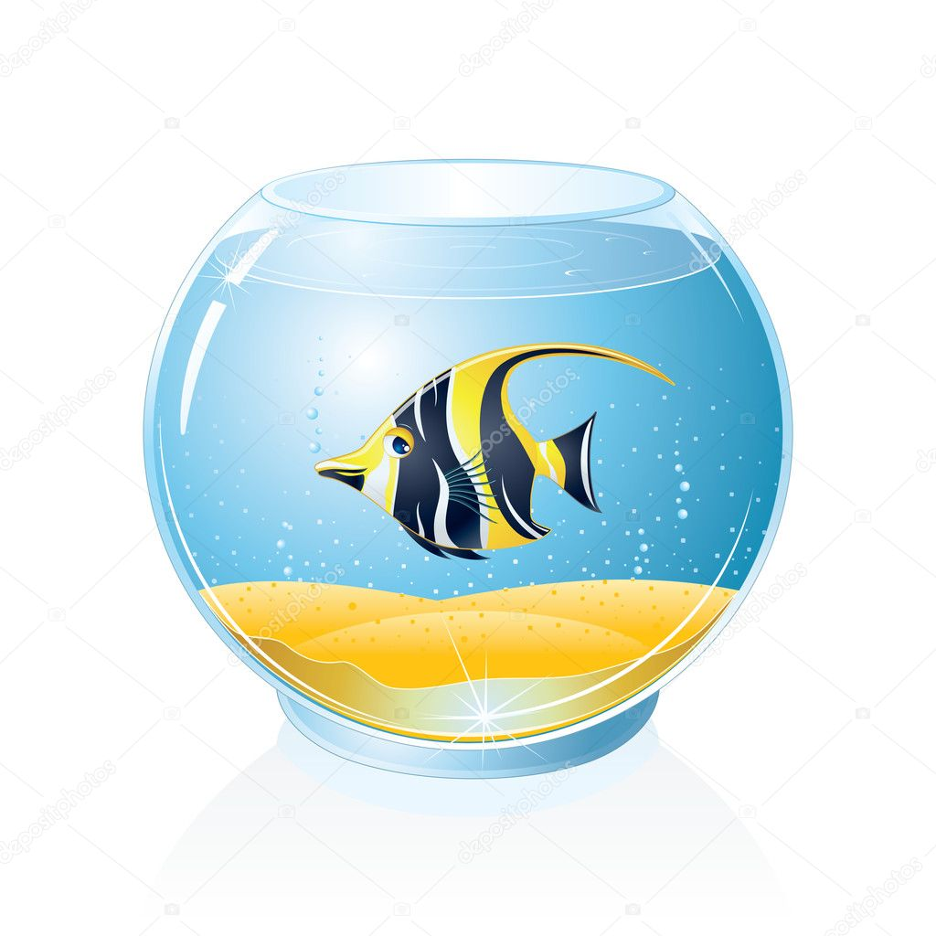 Fish Bowl with Exotic Fish. Isolated Vector Illustration  Stock Vector #14099800