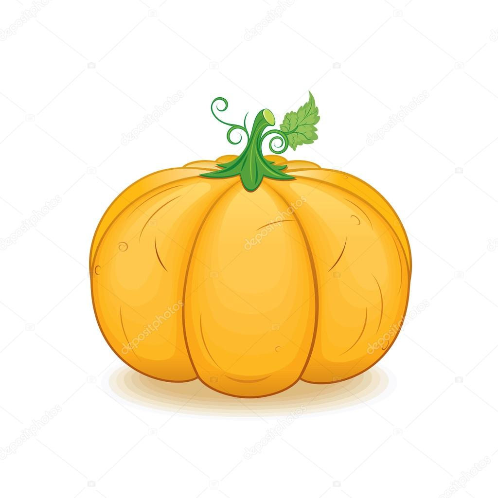 Large Orange Pumpkin. Vector Image — Stock Vector #20181113