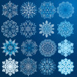 Beauty Snowflakes. — Stock Photo
