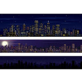 City Skyline. Collection of Night Skyline — Stock Vector