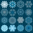 decoratieve sneeuwvlokken vector set — Stockvector