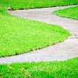 Lawn and path — Stock Photo