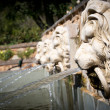 Lion head fountain — Stock Photo