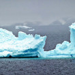 Iceberg — Stock Photo #29203365