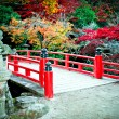 Bridge and Autumn Colours in Miyajima Japan — Zdjęcie stockowe