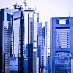 Tokyo skyline — Stock Photo #29211871