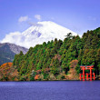 Mount Fuji — Stock Photo #29211919