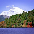 Mount Fuji — Stock Photo #29211919