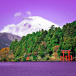 Mount Fuji — Stock Photo #29211941