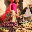 Unidentified woman at the Pushkar fair — Stock Photo