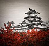 Himeji Castle — Stock Photo
