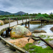 Footbridge at Tidal River — Stock Photo