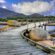 Footbridge at Tidal River — 图库照片