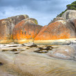 Coastal scene at Wilsons promontory — Stock Photo