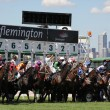 MELBOURNE - MARCH 13: Horses jump from the starting stalls in the Roy Higgins Quality, won by Elmore at Flemington on March 13, 2010 - Melbourne, Australia. — Stock Photo