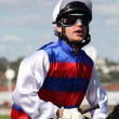 Постер, плакат: MELBOURNE MARCH 13: Danny Nikolic on Guru Bob before the Crown Guineas