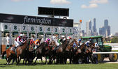 MELBOURNE - MARCH 13: Horses jump from the starting stalls in the Roy Higgins Quality, won by Elmore at Flemington on March 13, 2010 - Melbourne, Australia. — Stok fotoğraf