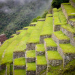 Inca Trail to Machu Picchu in Peru — Stock Photo