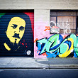 MELBOURNE - JUNE 29: Street art by unidentified artist.  Melbourne's graffiti — Stock Photo